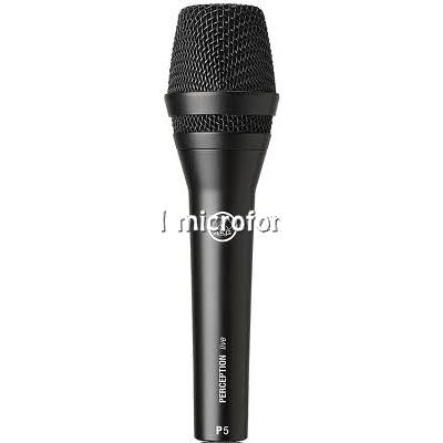 P5 AKG microfono voce maschile