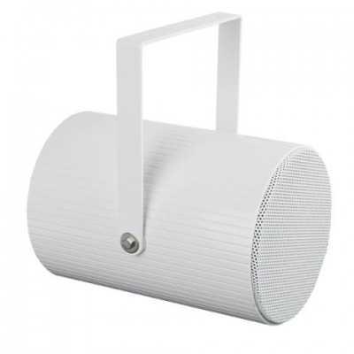 proiettori di suono 100 v